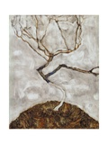 Small Tree in Late Autumn Giclee Print by Egon Schiele