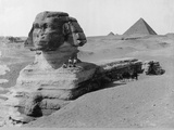 The Great Sphinx in the Desert Photographic Print