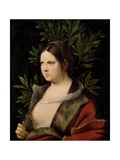 Young Woman (Laura) Giclee Print by  Giorgione
