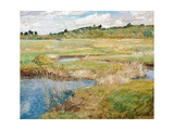 The Concord Meadow, Concord, Massachusetts Giclee Print by Childe Hassam