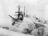 Sailing Ships in Alaskan Ice Photographic Print by Loman Brothers