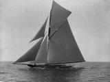 Racing Sloop in Full Sail Photographie par N.L. Stebbins