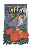 Jaffa Orange Crate Label Giclee Print