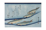 Rivertrout Giclee Print by Ando Hiroshige