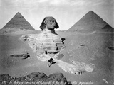 The Great Sphinx at Giza Photographic Print by Felix Bonfils