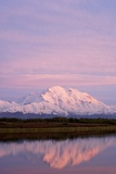 Mount Mckinley at Sunset in Denali National Park Photographic Print by Paul Souders