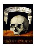 Skull of a Man - Memento Mori Giclee Print by Andrea Previtali