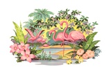 Flamingos in the Tropics Reproduction procédé giclée