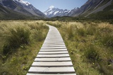 Wooden Path Through Mount Cook National Park Photographic Print by Paul Souders