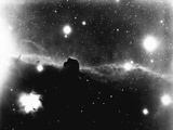Horse's Head in Orion Nebula Photographic Print
