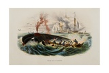 Whaling Giclee Print