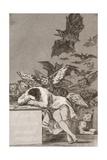 Francisco de Goya - The Sleep of Reason Produces Monsters (No. 43), from Los Caprichos Digitálně vytištěná reprodukce