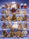 A Collection of Steiff Bears Photographic Print