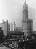 Woolworth Building, New York Photographic Print