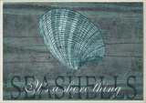 Seashells It's a Shore Thing Wall Plaque Wood Sign