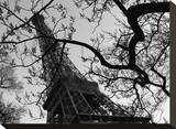 Eiffel III Stretched Canvas Print by Tom Artin