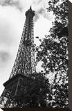Eiffel II Stretched Canvas Print by Tom Artin
