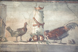 Italy, Naples, Naples National Archeological Museum, Rooster and Hen Photographic Print by Samuel Magal