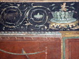 Italy, Naples, Naples National Archeological Museum, from Pompeii, Frieze with Drawing Branch Photographic Print by Samuel Magal