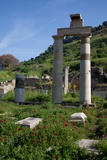 Turkey, Ephesus, Prytaneion Photographic Print by Samuel Magal