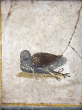 Italy, Naples, Naples National Archeological Museum, Stabiae, Villa of Arianna (15), Birds Impressão fotográfica por Samuel Magal