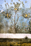 Italy, Rome House of Livia Roman Garden Painting Photographic Print