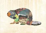 Woodland Creature: Beaver Poster Plakaty autor Satchel & Sage