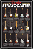Fender- Stratocaster Evolution Print