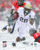 Dion Lewis University of Pittsburgh Panthers 2010 Action Photo