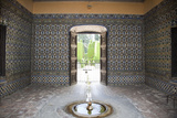 Spain, Andalusia, Sevilla, Alcazar, Royal Fortresses (The Royal Alcazar), Door and Fountain Photographic Print by Samuel Magal