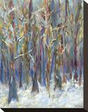 Winter Angels in the Aspen Stretched Canvas Print by Amy Dixon