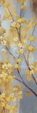 Forsythia Garden II Print by  Nan