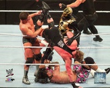 Cody Rhodes & Goldust 2014 Royal Rumble Action Photo