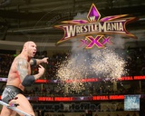 Batista 2014 Royal Rumble Action Photo