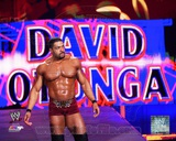 World Wrestling Entertainment David Otunga 2013 Action Photo