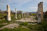 Turkey, Aphrodisias, Imperial Hall Photographic Print by Samuel Magal