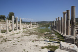 Turkey, Patara, Colonnade Street Photographic Print by Samuel Magal