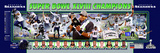 Seattle Seahawks Super Bowl XLVIII Champions Panoramic Photo