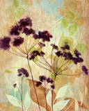 Plum Silhouette I Art by  Tava Studios