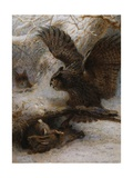 A Hair-Breadth Escape: an Owl, a Fox and a Hare Giclee Print by Joseph Wolf