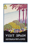 Visit Spain - Mediterranean Fruits and Flowers Travel Poster Giclee Print by A. Vercher