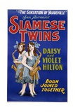 Poster Advertisement for Siamese Twins Daisy and Violet Hilton Giclee Print