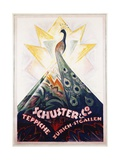 Schuster and Co. Poster Giclee Print by Carl Bockli