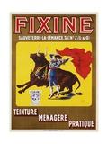Fixine Poster Giclee Print