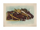 Head and Head at the Winning Post Giclee Print by  Currier & Ives