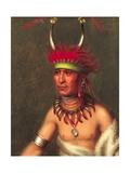 Shaumonekusse (Prairie Wolf) Giclee Print by Charles Bird King