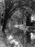 1920s-1930s Water in Section of Abandoned Delaware Canal Reflecting Trees Lining its Banks Photographic Print
