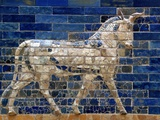 Detail of Auroch on Ishtar Gate at Pergamon Museum Photographic Print