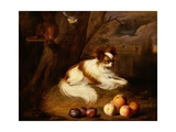 Painting of a Spaniel Near a Tree Giclee Print by Jakob Bogdany
