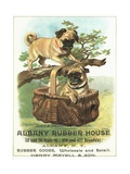 Albany Rubber House Advertisement Giclee Print